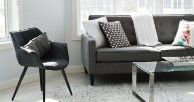 salon de maison avec canapé en cuir