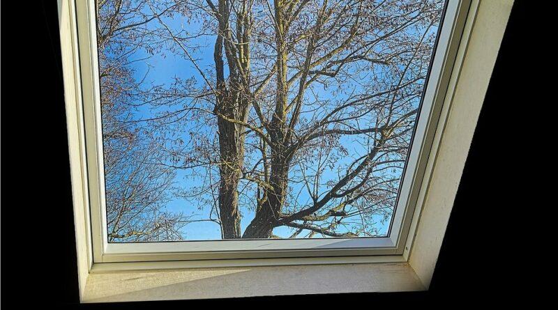 entretien vélux de toit et fenêtre