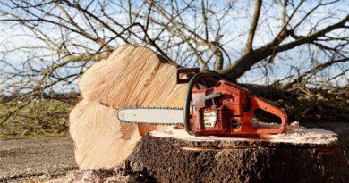 tronçonneuses sur du bois
